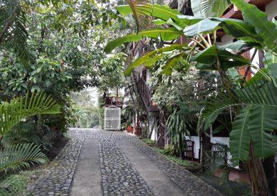 hotel la cabaña del viajero izabal guatemala (5)